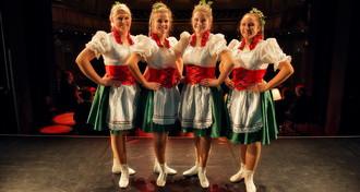 Chursächsischer Hofballverein